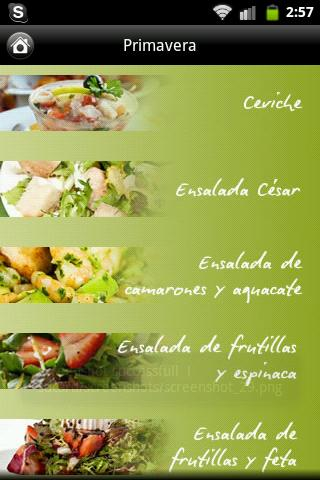 iCocinar Ensaladas - screenshot