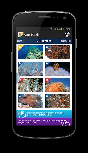 Aquarium Video Puzzle