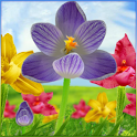 Blooming Flowers LWP icon