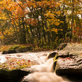 Water Falls Near Cushing by Bala Ve - Landscapes Waterscapes ( new england, downeast, fall colors, maine, 2014, fall, color, colorful, nature )