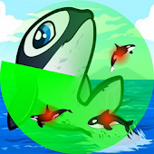 Killer Whale Radar (fun)