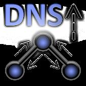 DNS Query Info