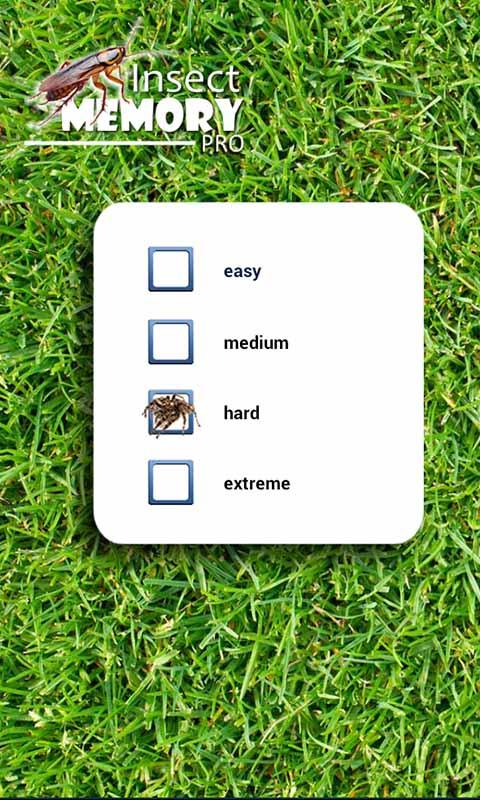 Insect Memory Game PRO- screenshot