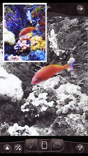 【免費攝影App】Colorful-我的照片在過濾器的操縱感好豐富多彩!-APP點子