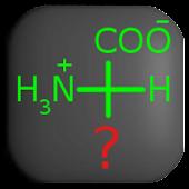 Amino Acids Mastery