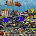 3D Aquarium Live Wallpaper HD icon