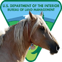 BLM Mustang Adoption Gallery icon