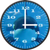 Killer Whale 1 Analog Clock