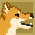 Doge Run icon