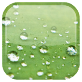 Galaxy S3 Rain Live Wallpaper