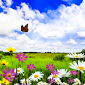 Butterfly Live Wallpaper HD 3 icon