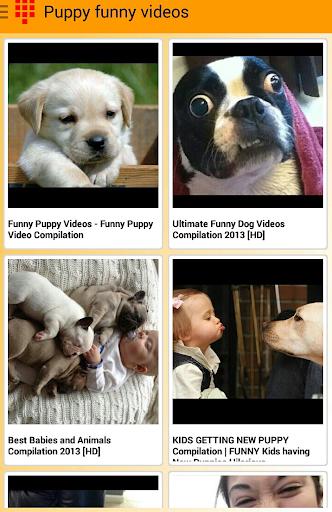 Happy Puppies Videos