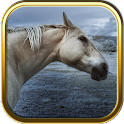 Horse Puzzles icon