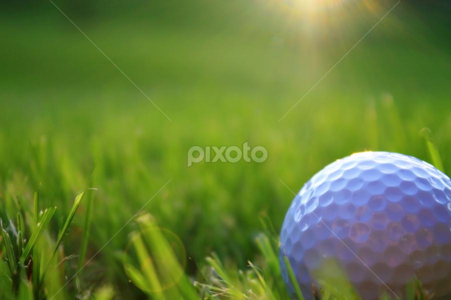 by Kim Rogers-Krahel - Sports & Fitness Golf