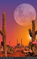 Screenshot of Desert Free Live Wallpaper