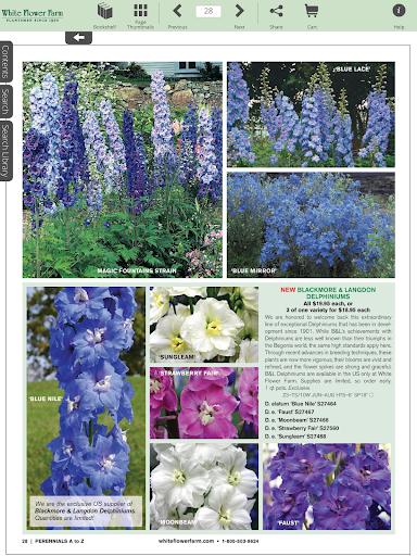 玩書籍App|White Flower Farm Catalogs免費|APP試玩