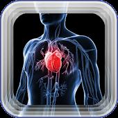 Heart Murmurs Information