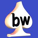 Bridgewebs icon