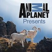 Animal Planet Presents