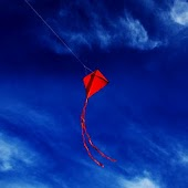 Soaring Kites Live Wallpaper