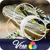 Venn Lizards: Circle Jigsaw