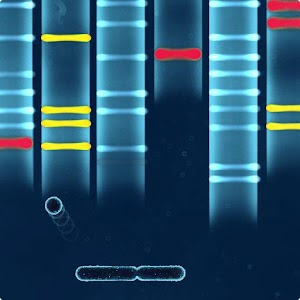 DNA Breaker for PC and MAC