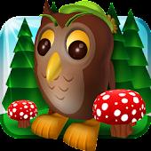 Owl Adventure