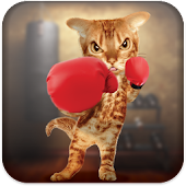 Download Boxing Cat APK for Laptop