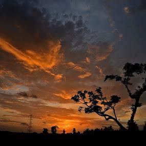 by Subramanya Padubidri - Landscapes Sunsets & Sunrises