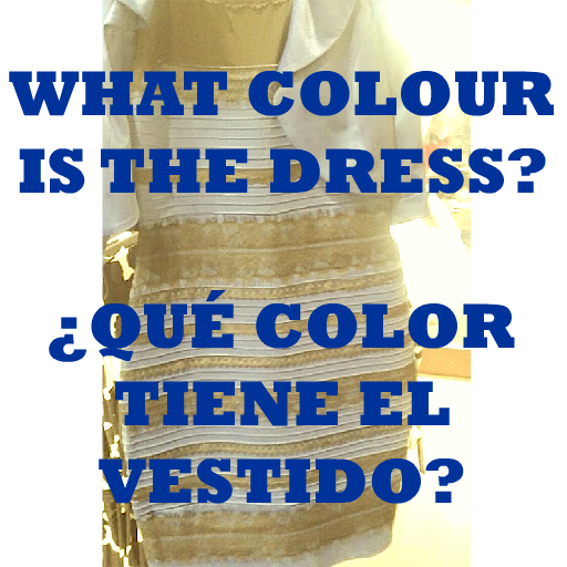 COLOR VESTIDO COLOUR DRESS