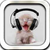 Cute Music Cat Live Wallpaper