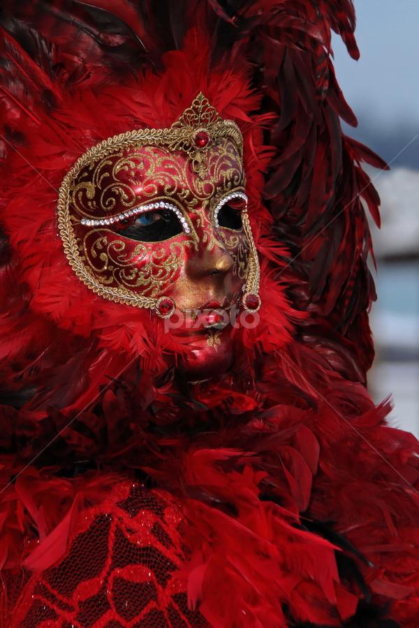 Venice Mask by Dominic Jacob - News & Events World Events ( venezia, italia, carnavale, carnival, carnaval, venice, mask, venise, italy, masque,  )