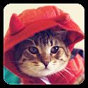 Cute Cats Live Wallpaper icon