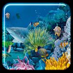 Underwater Live Wallpaper