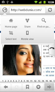 SETT Hindi Marathi browser - screenshot thumbnail