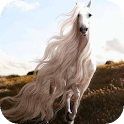 Horse with Long Mane LWP icon