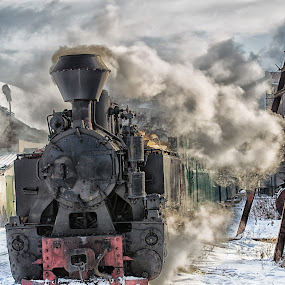 Ready to go by Pascal Hubert - Transportation Trains