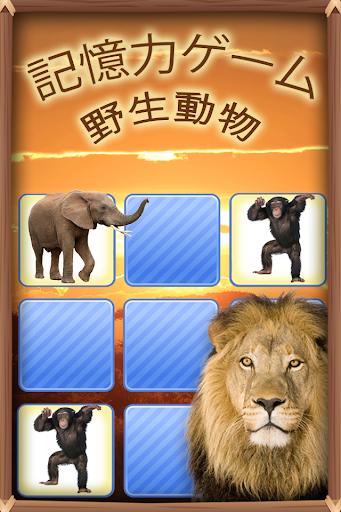 記憶力ゲーム 野生動物 フォト