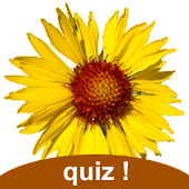 Flora of Yellowstone Quiz