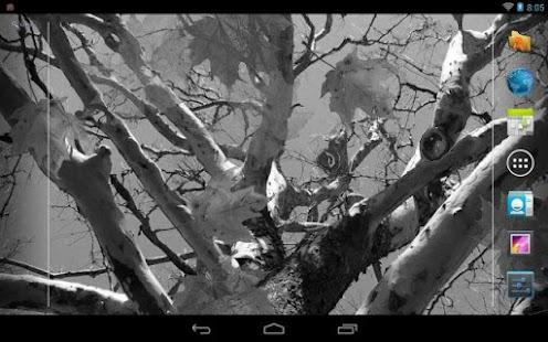 Autumn Maple Live Wallpaper- screenshot thumbnail