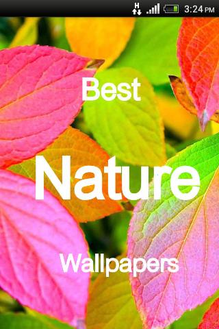 Nature Best Wallpaper