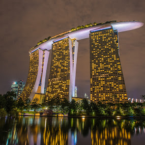 Marina Bay Sands by Alex Shanti - Buildings & Architecture Office Buildings & Hotels ( hdr, marina bay sands, night, singapore, city, , Urban, City, Lifestyle )