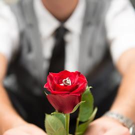 Ringed by Aldus Smith - Wedding Groom