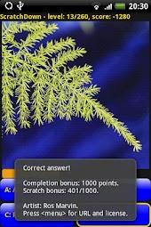 ScratchDown: Custom
