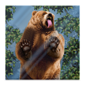 Bear Licks Live Wallpaper