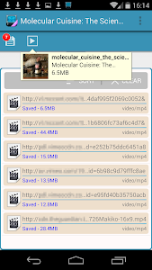 AVD Download Video v3.3.6