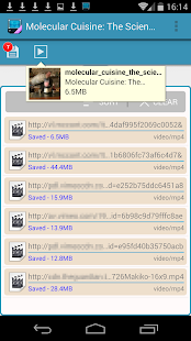 AVD Download Video Downloader - screenshot thumbnail