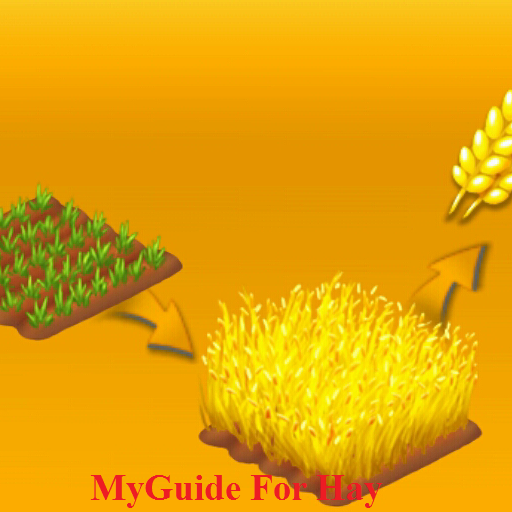 MyGuide for Hay