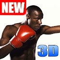 Boxing Fighting 3D - Real Free icon