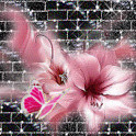 Pink Butterfly and Flower Live icon